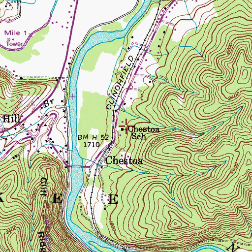 Topographic Map of Chestoa School, TN