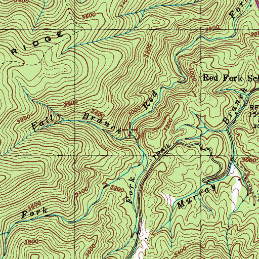 Topographic Map of Fall Branch, TN