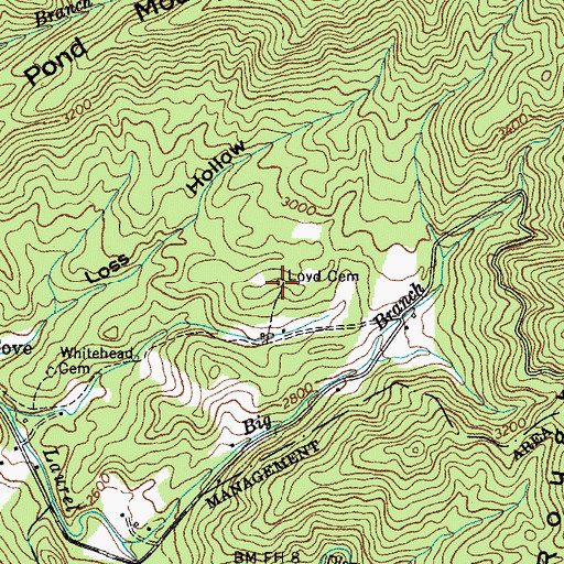 Topographic Map of Loyd Cemetery, TN