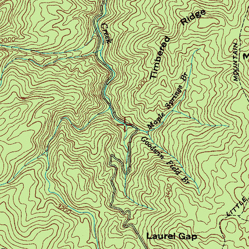 Topographic Map of Maple Springs Branch, TN