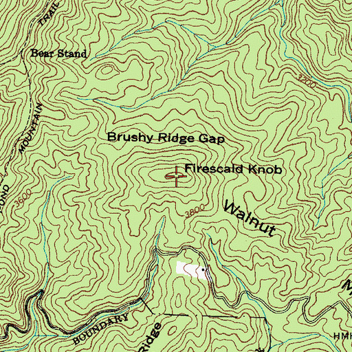Topographic Map of Walnut Mountain, TN