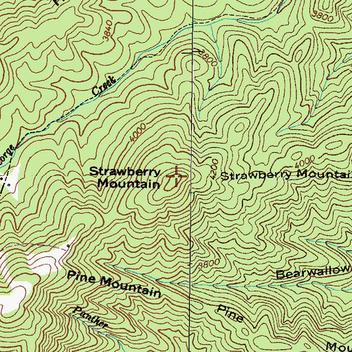 Topographic Map of Strawberry Mountain, TN
