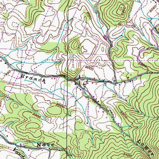 Topographic Map of Upper Nidifer Branch, TN