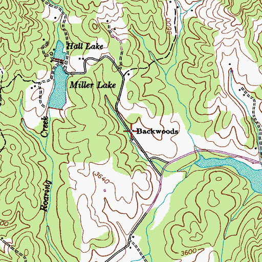 Topographic Map of Backwoods, TN