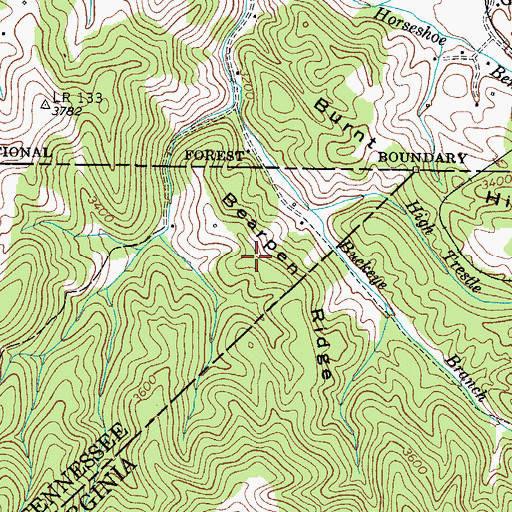 Topographic Map of Bearpen Ridge, TN