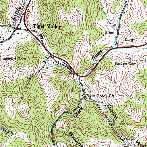 Topographic Map of Gouge Branch, TN