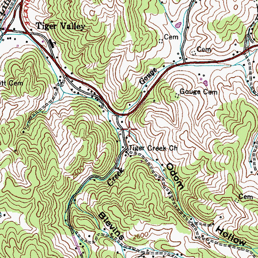 Topographic Map of Odom Hollow, TN