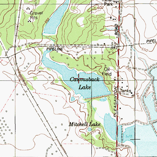 Topographic Map of Canvasback Lake, TX