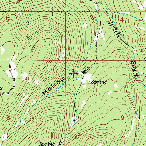 Topographic Map of Bear Hollow, UT