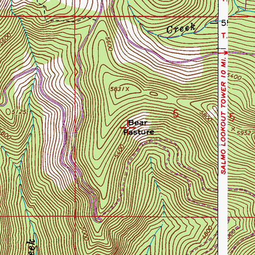 Topographic Map of Bear Pasture, WA