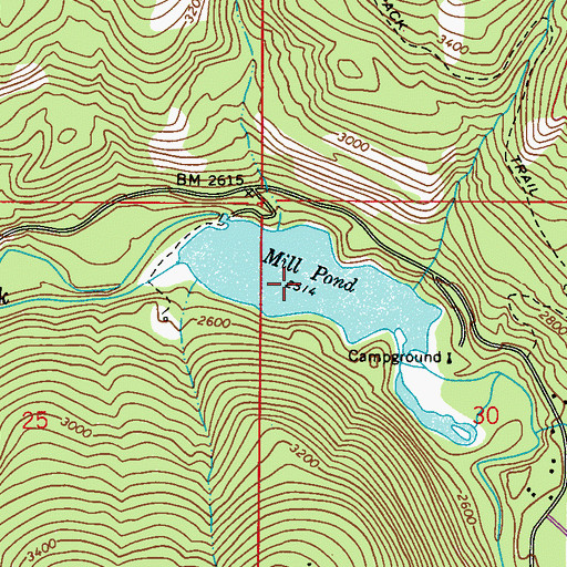 Topographic Map of Mill Pond, WA