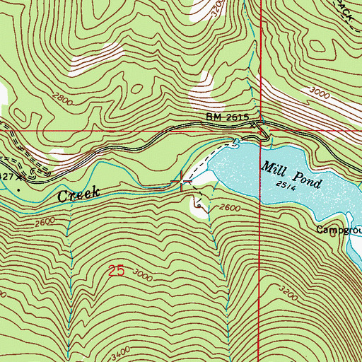 Topographic Map of Mill Pond Dam, WA
