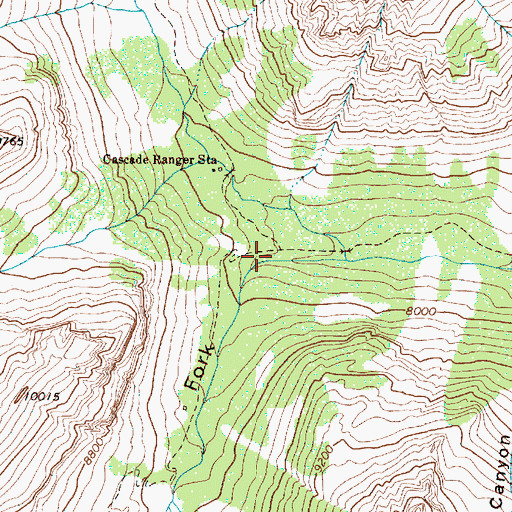 Topographic Map of South Fork Cascade Canyon, WY