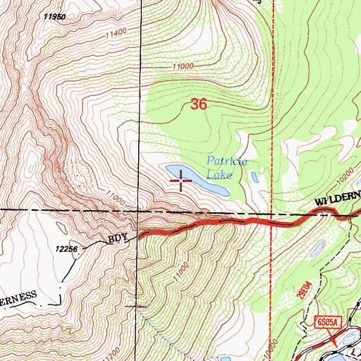 Topographic Map of Patricia Lake, CA
