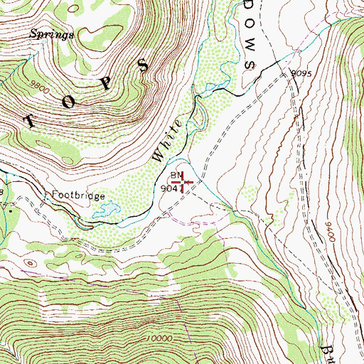 Topographic Map of The Meadows, CO