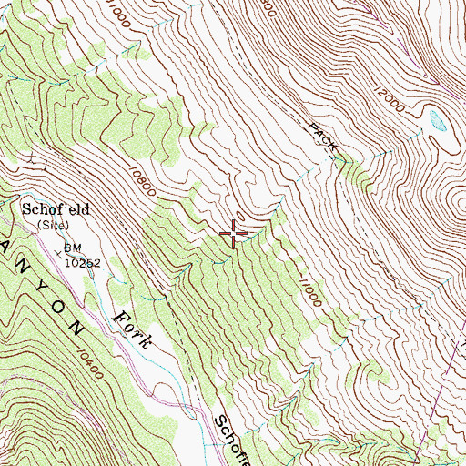 Topographic Map of Schofield, CO