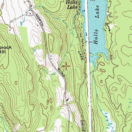 Topographic Map of Halls Lake, VT