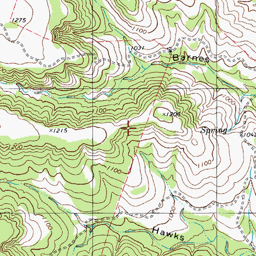 Topographic Map of Barnes Hollow Spring, TX