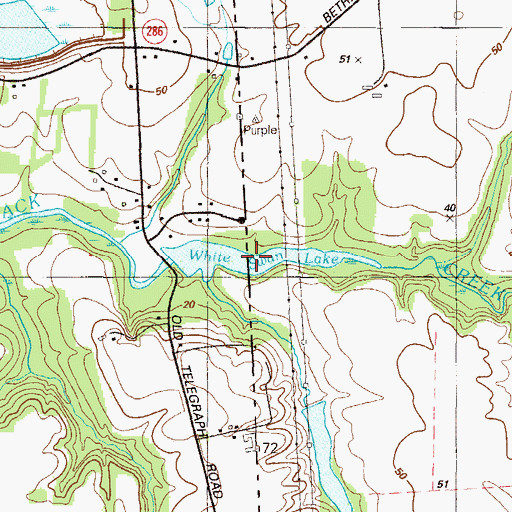 Topographic Map of White Swan Lake, DE