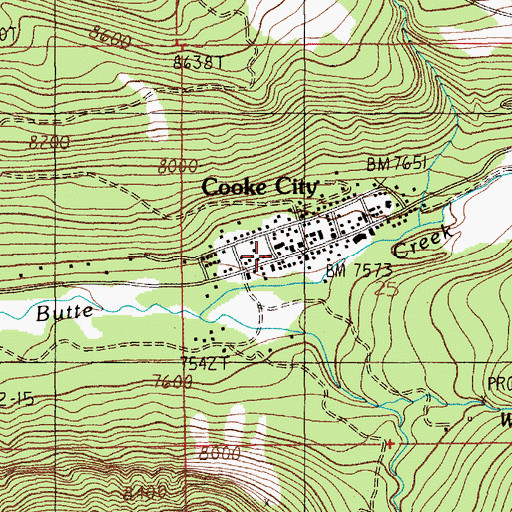 Topographic Map of Cooke City Fire Department, MT