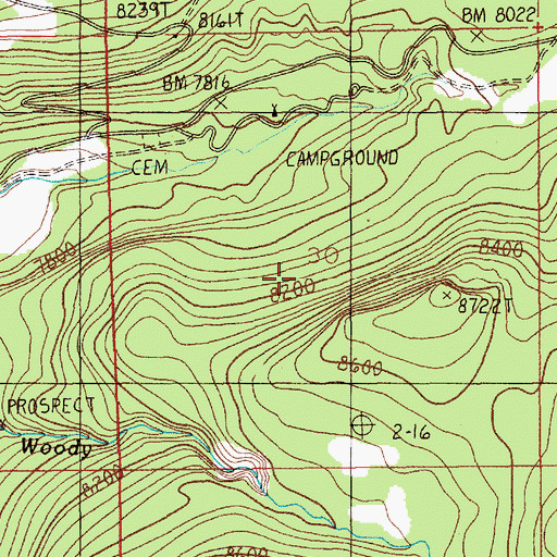 Topographic Map of Cooke City Census Designated Place, MT