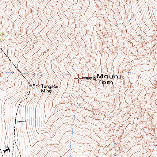 Topographic Map of Mount Tom, CA