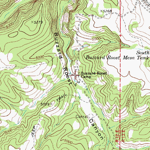 Topographic Map of Buzzard Roost Camp, AZ
