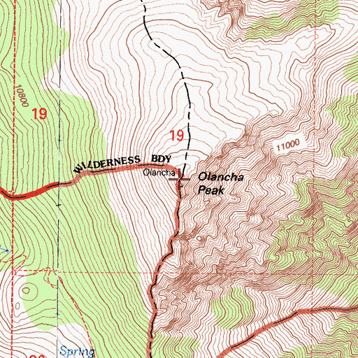 Topographic Map of Olancha Peak, CA
