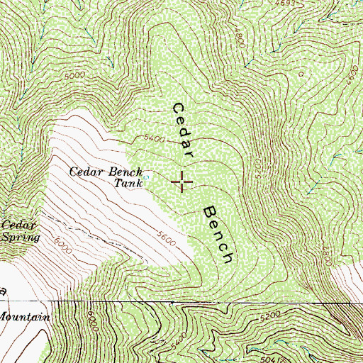 Topographic Map of Cedar Bench, AZ