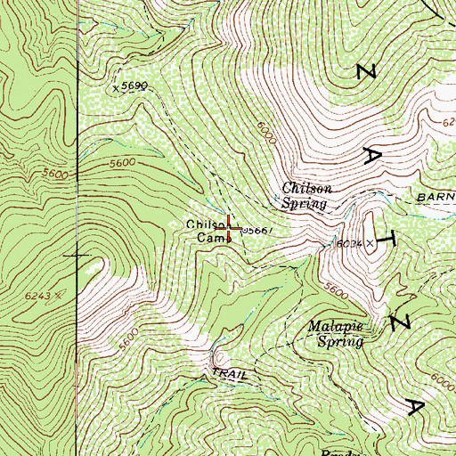 Topographic Map of Chilson Camp, AZ
