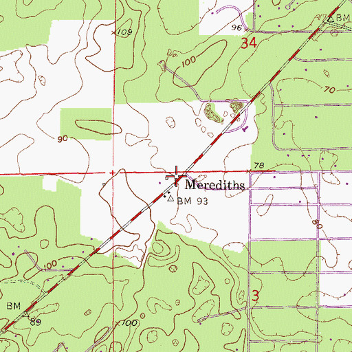 Topographic Map of Merediths, FL