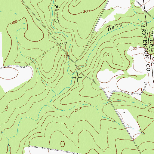 Topographic Map of Bony Branch, GA