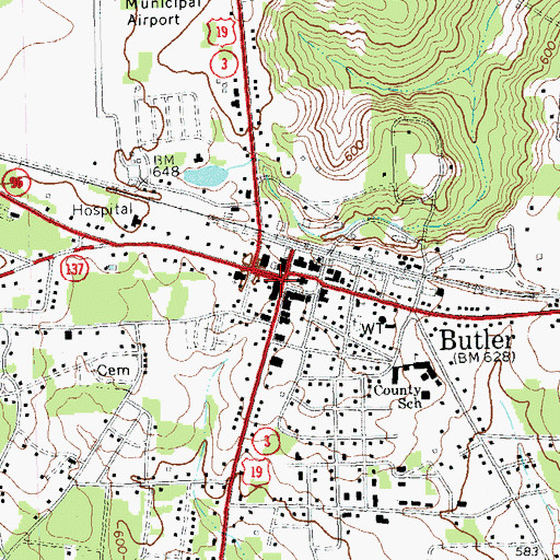 Topographic Map of Butler, GA