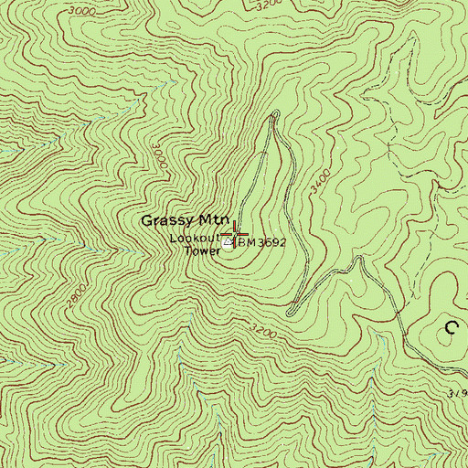 Topographic Map of Grassy Mountain, GA