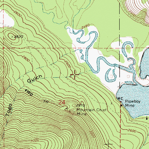 Topographic Map of Togo Gulch, ID