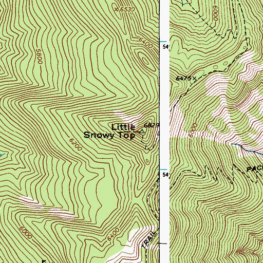 Topographic Map of Little Snowy Top, ID