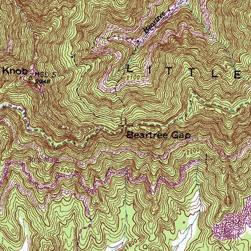 Topographic Map of Beartree Gap, KY
