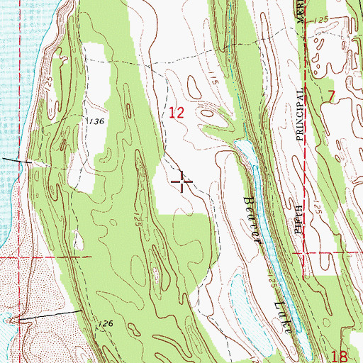Topographic Map of Island Number 84, AR