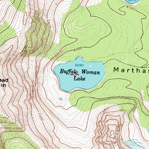 Topographic Map of Buffalo Woman Lake, MT