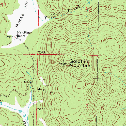 Topographic Map of Goldflint Mountain, MT