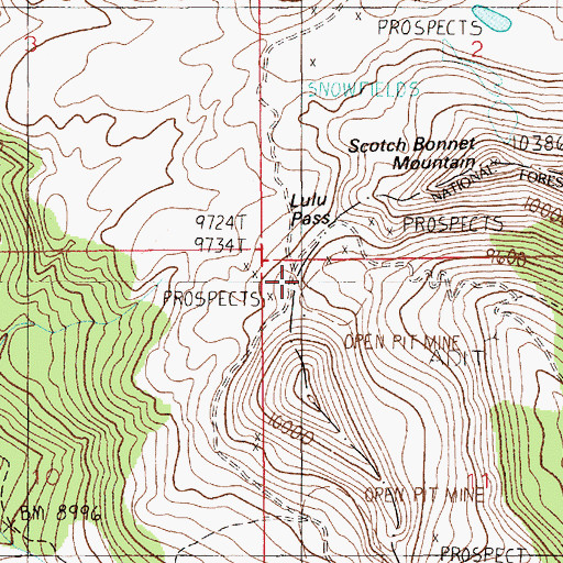 Topographic Map of Lulu Pass, MT
