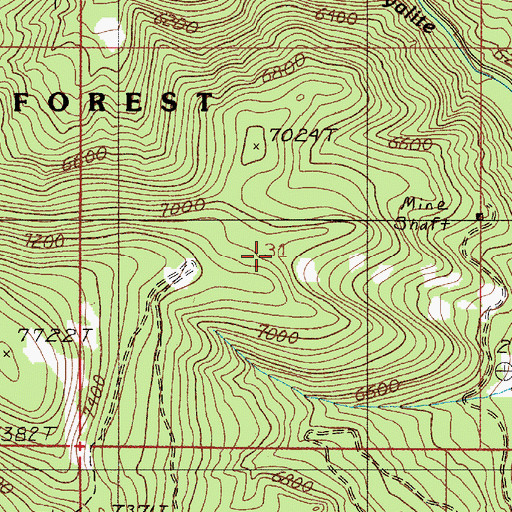Topographic Map of Sunshine Mine, MT