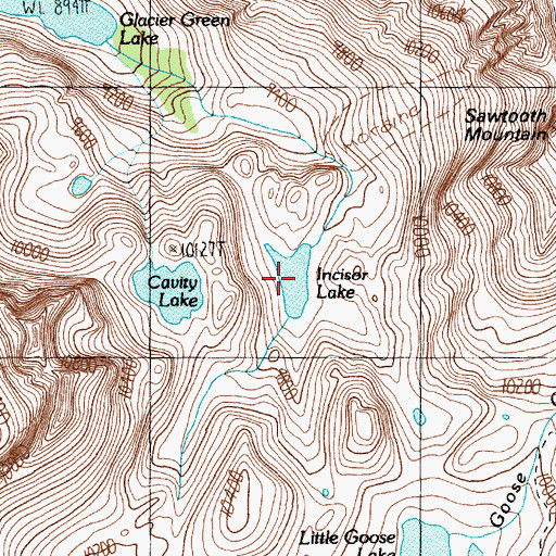 Topographic Map of Incisor Lake, MT