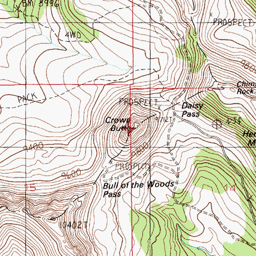 Topographic Map of Crown Butte, MT