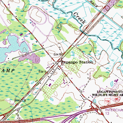 Topographic Map of Repaupo Station, NJ