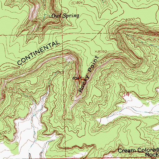 Topographic Map of Rocky Point, NM