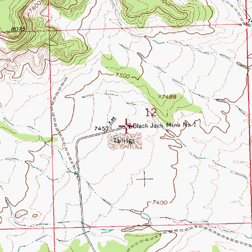 Topographic Map of Black Jack Mine Number One, NM