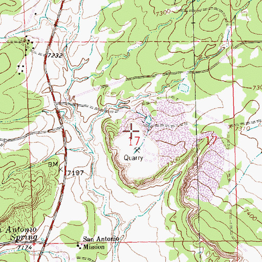 Topographic Map of Elkins Lime Pit, NM