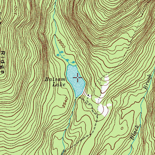 Topographic Map of Balsam Lake, NY