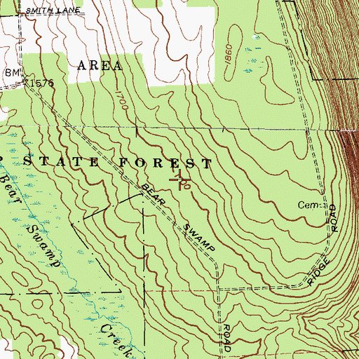 Topographic Map of Bear Swamp State Forest, NY
